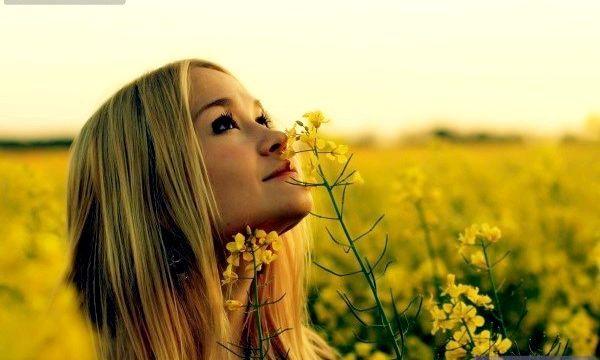 Корисні властивості рослини чистотіл