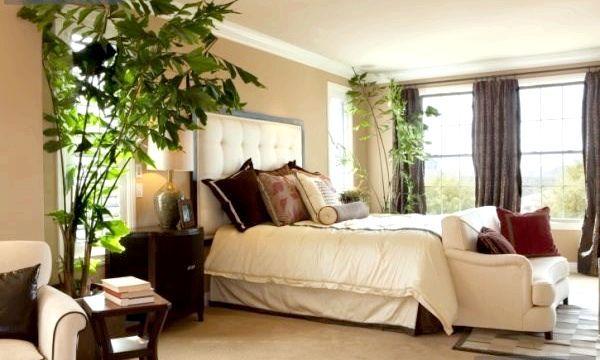 Квіти в інтер'єрі спальні (фото)
