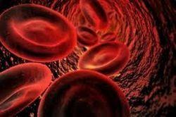 Як лікувати підвищений холестерин