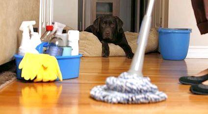 Як прибрати квартиру швидко: кращі поради та рекомендації