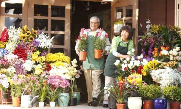 Які квіти подарувати на 8 березня