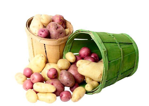 Картопля - корисні властивості, лікування. Маска для обличчя з картоплі