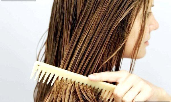 Корінь лопуха для волосся: користь і рецепти