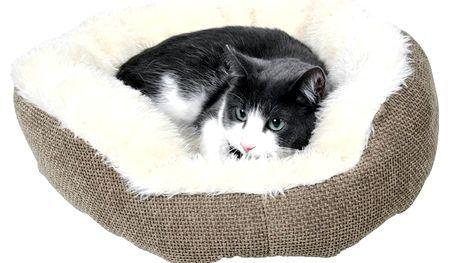 Лежанка для кішки своїми руками