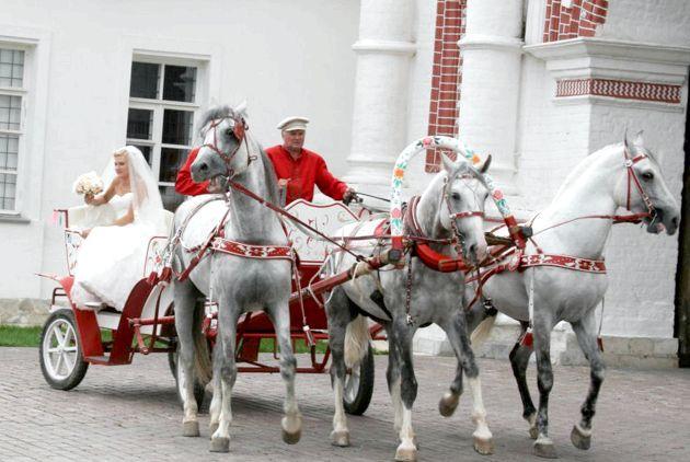 Коні вместо лімузінів