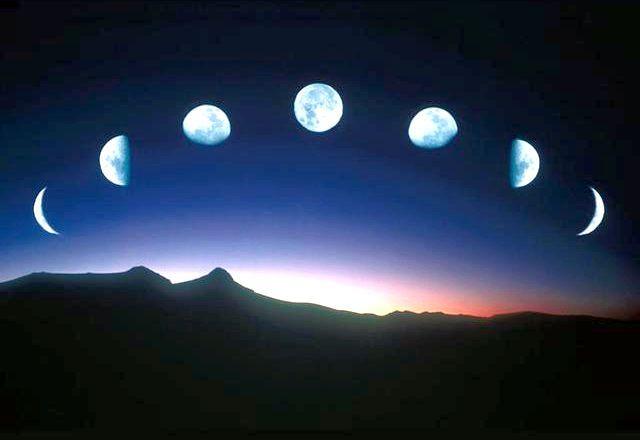 Місячний календар пересадки кімнатних рослин 2015