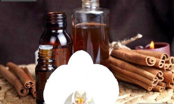 Масло кориці для волосся (рецепти)