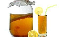 Молочний та чайний гриб для схуднення