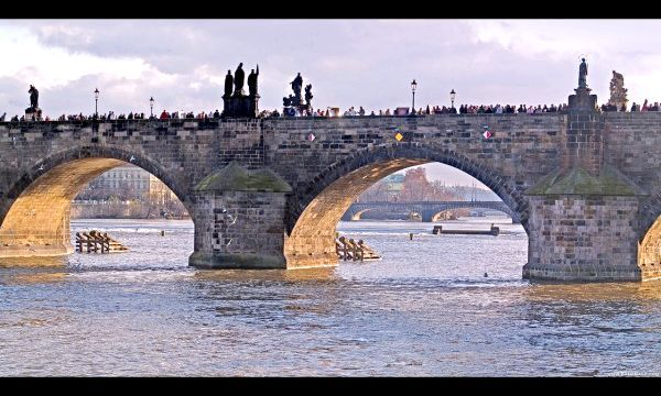 Карлов міст