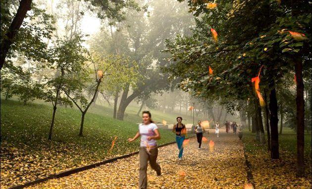 Осіння пробіжка. Користь пробіжок в осінній період