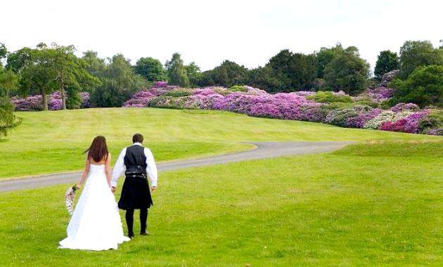 весілля в шотландії