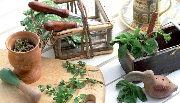 Пряні трави в кулінарії