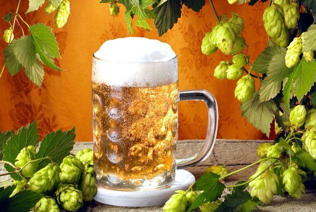Рецепти на основі пива - готуємо для чоловіків