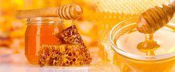 Сімейна пасіка - натуральний мед