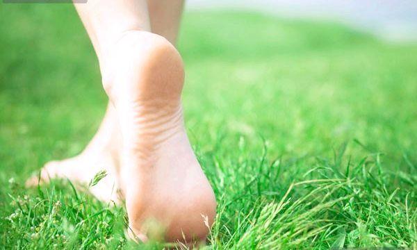 шіпіца на нозі