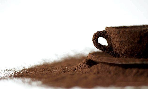 Сорти кави і їх класифікація