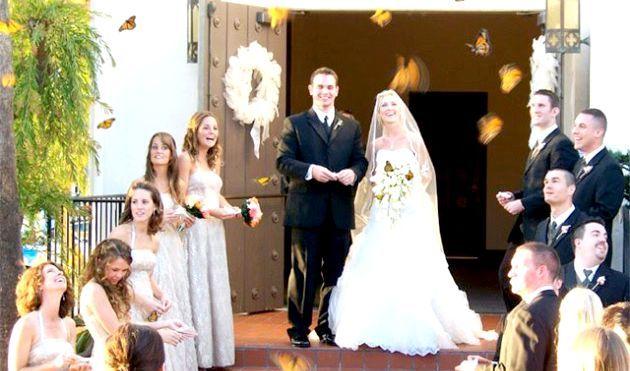 Весільний салют з метеликів