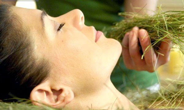 Трави для обличчя: користь і особливості