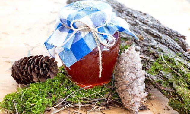 Варення з соснових шишок: кращі рецепти