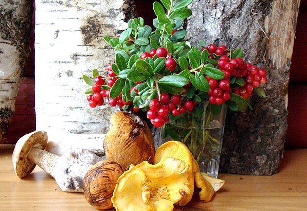Смачні страви з грибів